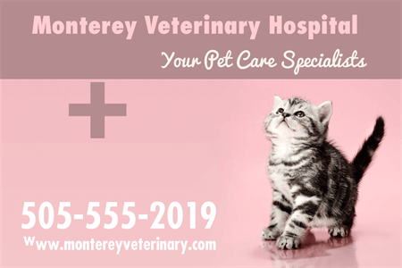 Veterinary Hospital Business Card: 2023-1