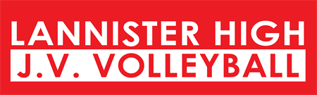High School Volleyball Bumper Sticker: 3367-1