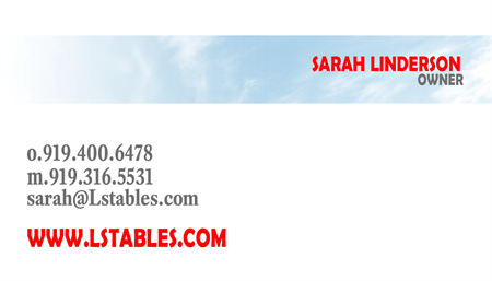 Horse Boarding And Care Business Card: 517-9