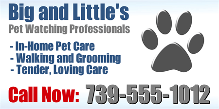 Animal Watching and Care Business Card: 556-1